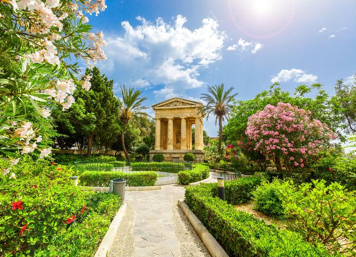 Barakka trädgården