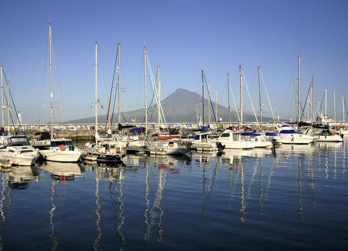 Den berömda hamnen i Horta.