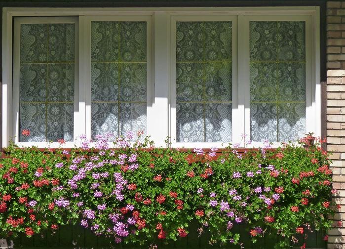 Fönster i Canazei