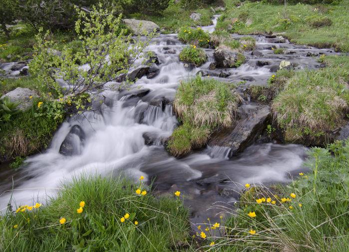 Fors i Andorra