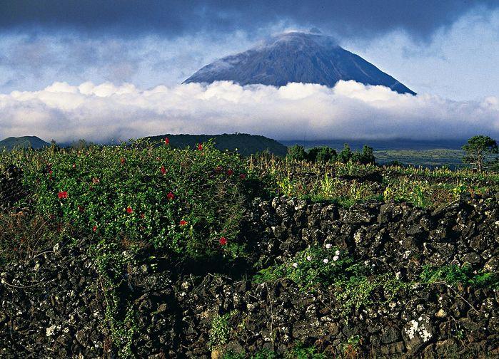 Pico 2351 m ö h
